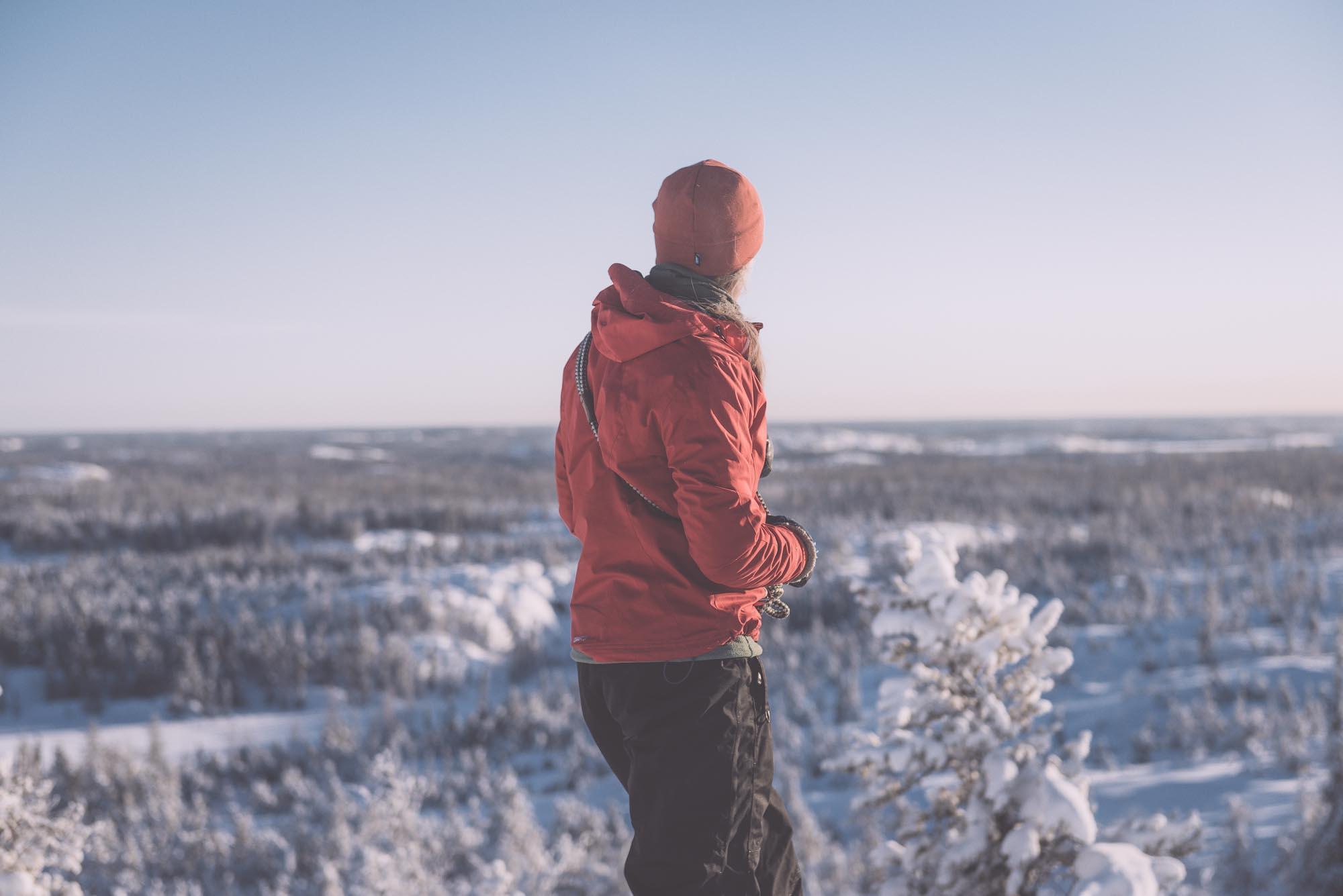 Winter Wonders by Kyle Thomas
